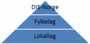 DIS-Norge organisation.png